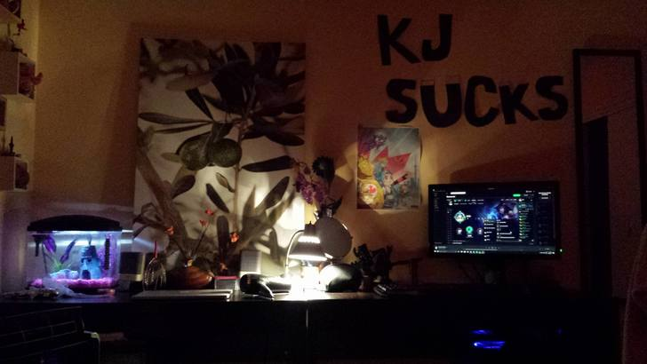 Juls PC Desk.jpg